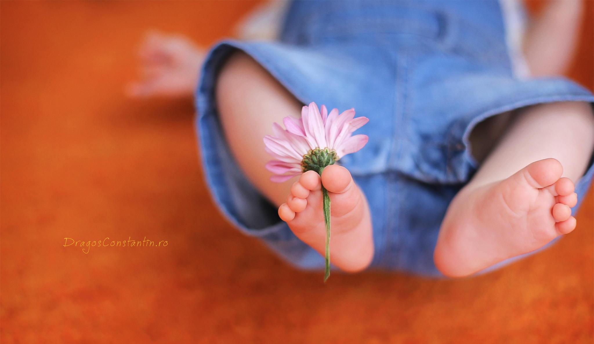 Fotografie Botez Floare